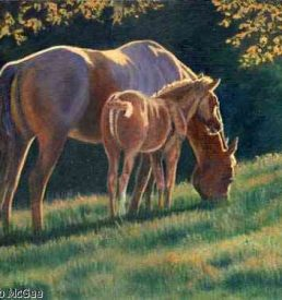 Pure Light - Mare and colt in golden sun light