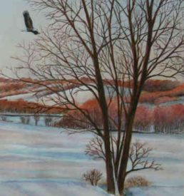 The Eagle Soars - Winter landscape with eagle