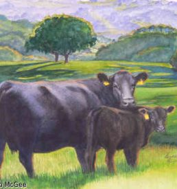 Green Pastures - Cow and Calf on lush spring pasture