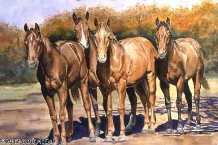The Gathering - The yearling pen
